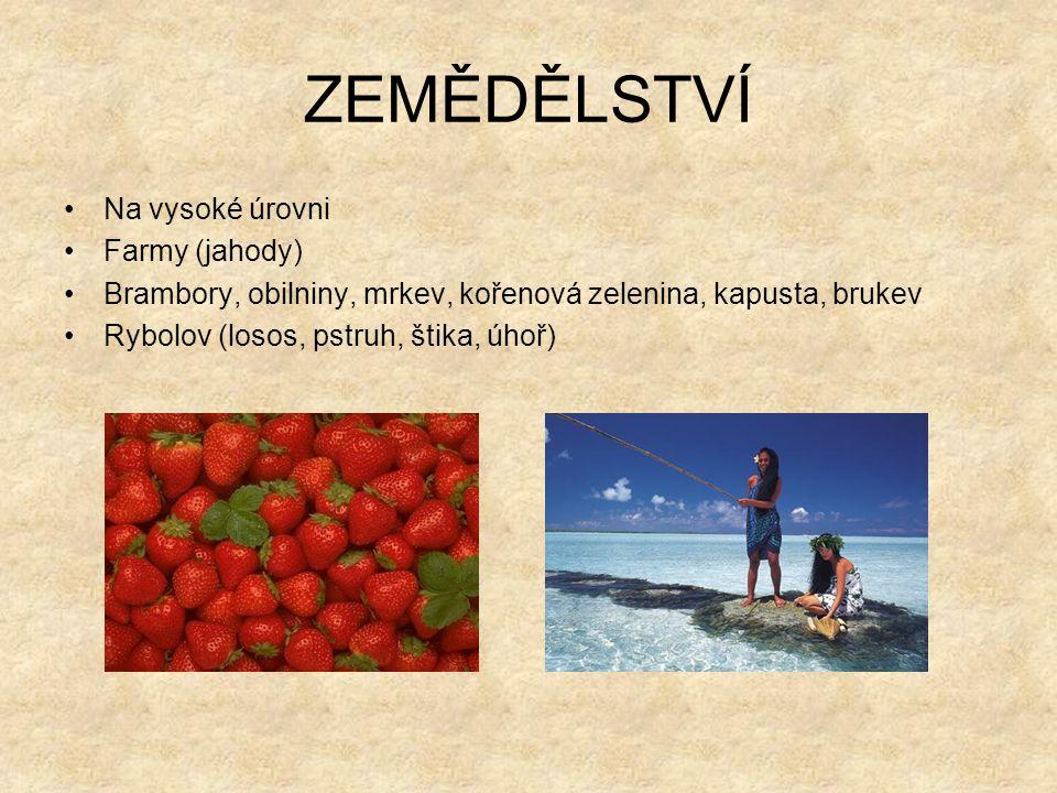 ZEMĚDĚLSTVÍ Na vysoké úrovni Farmy (jahody) Brambory, obilniny, mrkev, kořenová zelenina, kapusta, brukev Rybolov (losos, pstruh, štika, úhoř)