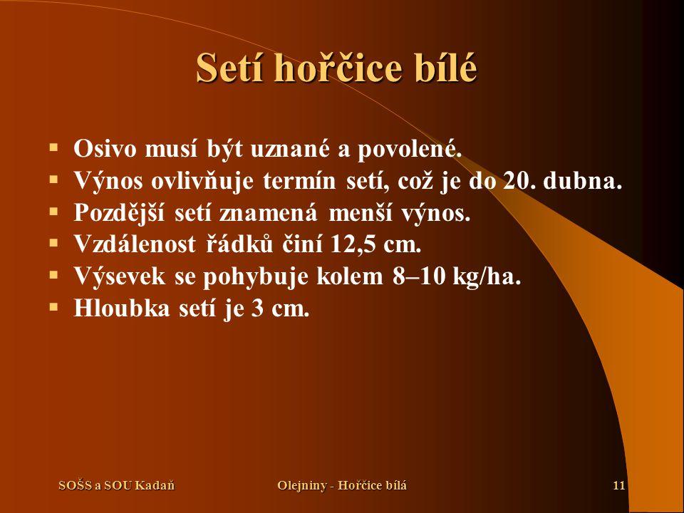 SOŠS a SOU KadaňOlejniny - Hořčice bílá11 Setí hořčice bílé  Osivo musí být uznané a povolené.