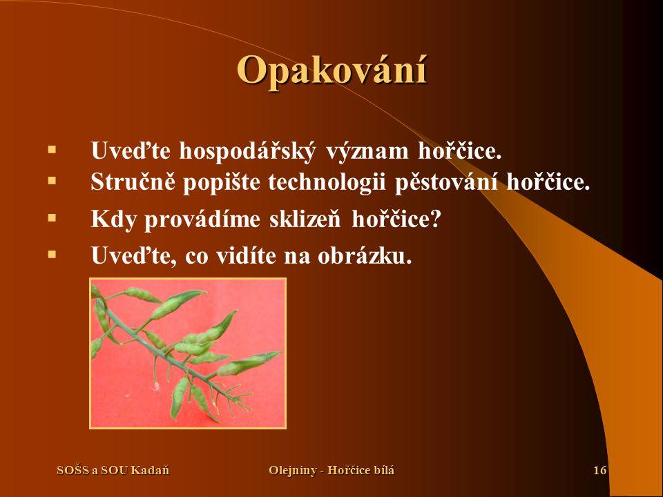 SOŠS a SOU KadaňOlejniny - Hořčice bílá16 Opakování  Uveďte hospodářský význam hořčice.