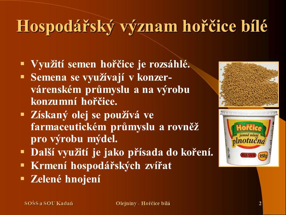 SOŠS a SOU KadaňOlejniny - Hořčice bílá2 Hospodářský význam hořčice bílé  Využití semen hořčice je rozsáhlé.