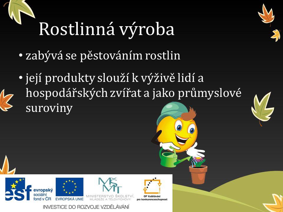 Rostlinná výroba zabývá se pěstováním rostlin její produkty slouží k výživě lidí a hospodářských zvířat a jako průmyslové suroviny