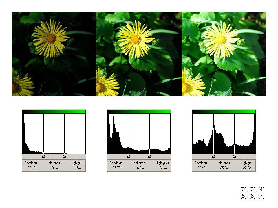 1. Světlé tóny se na histogramu zobrazují: a)vpravo b)vlevo c)uprostřed