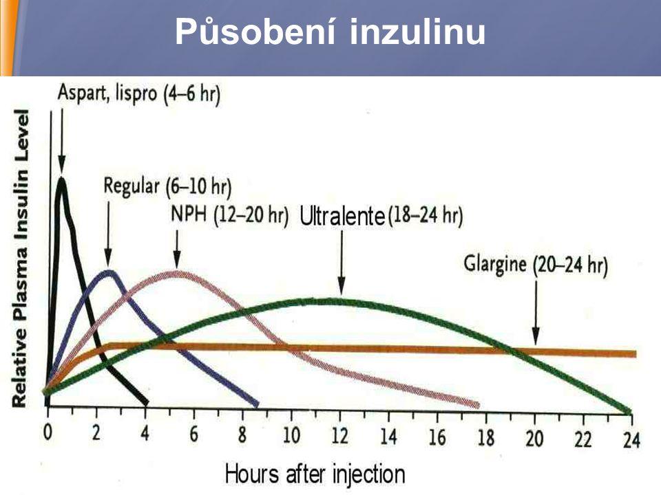 5 Působení inzulinu Levemir