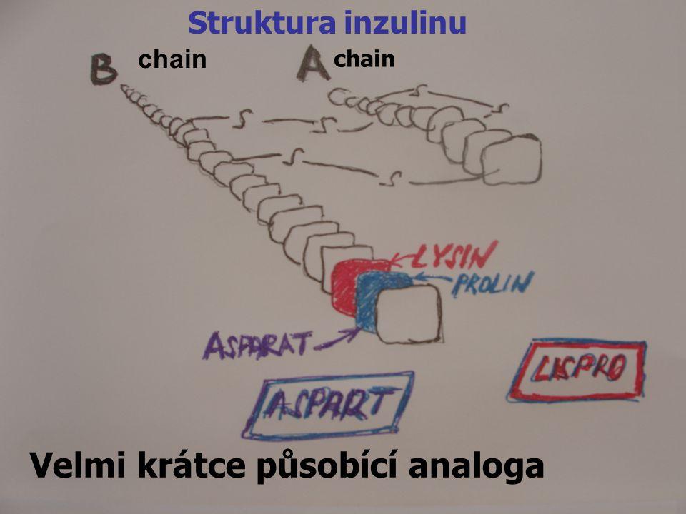7 Velmi krátce působící analoga chain Struktura inzulinu chain