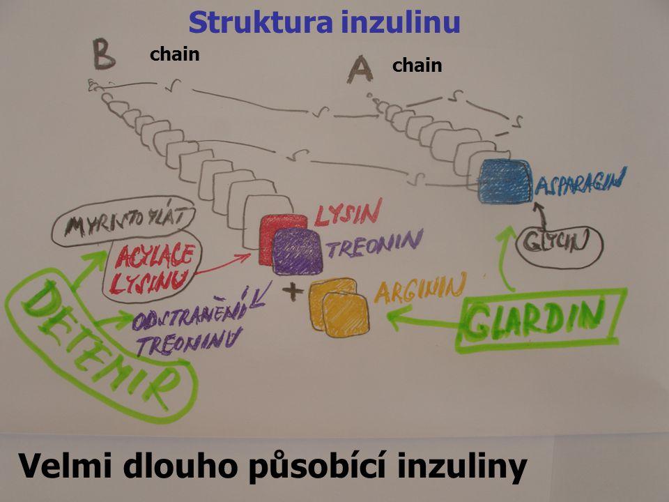 8 Velmi dlouho působící inzuliny Struktura inzulinu