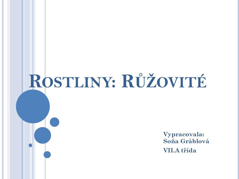 R OSTLINY : R ŮŽ OVITÉ Vypracovala: Soňa Gráblová VII.A třída