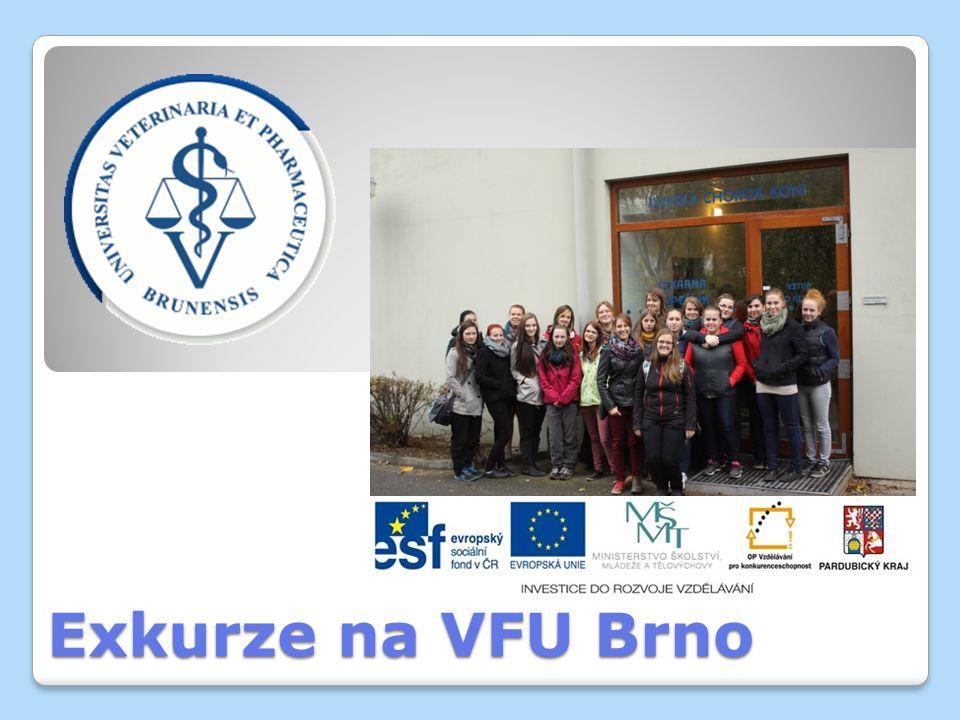 Exkurze na VFU Brno