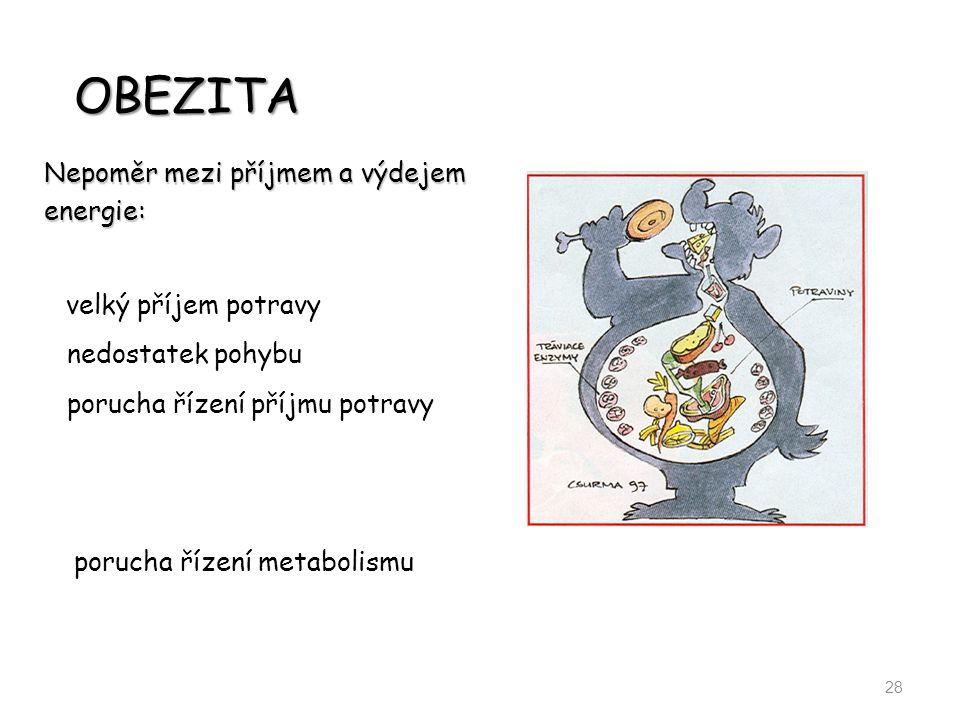 OBEZITA 28 Nepoměr mezi příjmem a výdejem energie: nedostatek pohybu porucha řízení příjmu potravy porucha řízení metabolismu velký příjem potravy