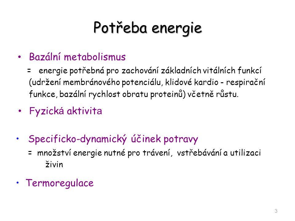 Potřeba energie Bazální metabolismus = energie potřebná pro zachování základních vitálních funkcí (udržení membránového potenciálu, klidové kardio - r