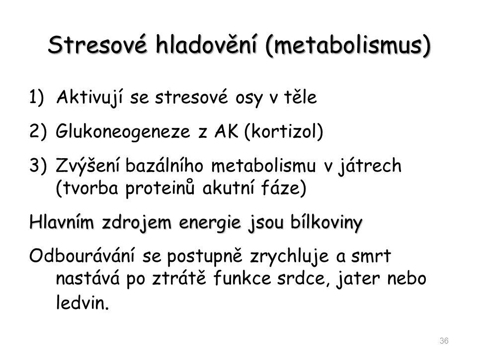 Stresové hladovění (metabolismus) 1)Aktivují se stresové osy v těle 2)Glukoneogeneze z AK (kortizol) 3)Zvýšení bazálního metabolismu v játrech (tvorba