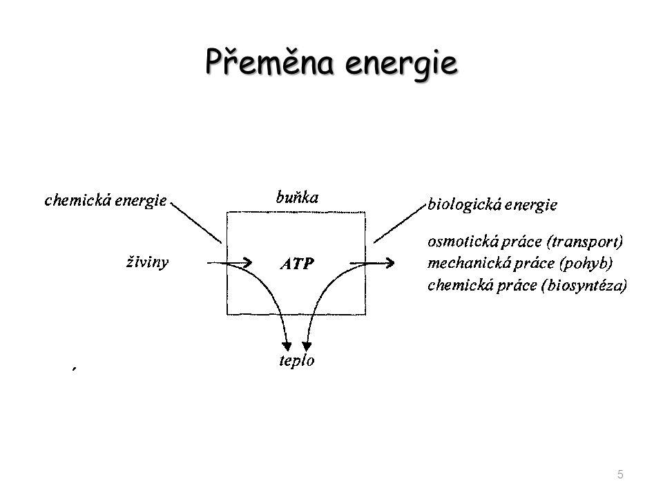 Přeměna energie 5