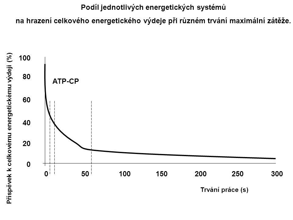 100150200250300500 100 80 60 40 20 0 Příspěvek k celkovému energetickému výdeji (%) Trvání práce (s) ATP-CP Podíl jednotlivých energetických systémů n