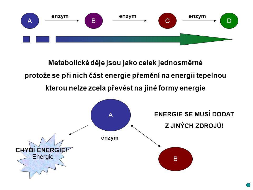 Metabolické děje jsou jako celek jednosměrné protože se při nich část energie přemění na energii tepelnou kterou nelze zcela převést na jiné formy ene