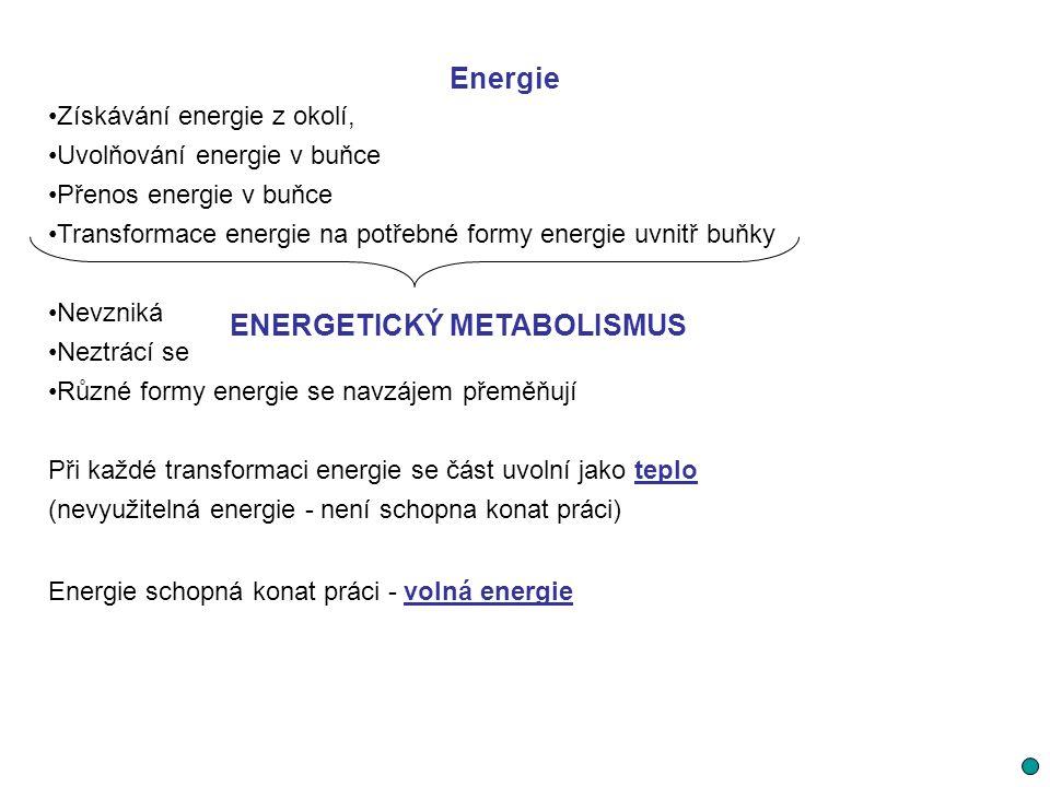 Energie Neustálý přívod vhodné formy energie z okolí Tepelná energie musí být odváděna z buňky do okolí Buňka - otevřený systém Při chemických reakcích se tato energie buď uvolňuje exergonické reakce (např.