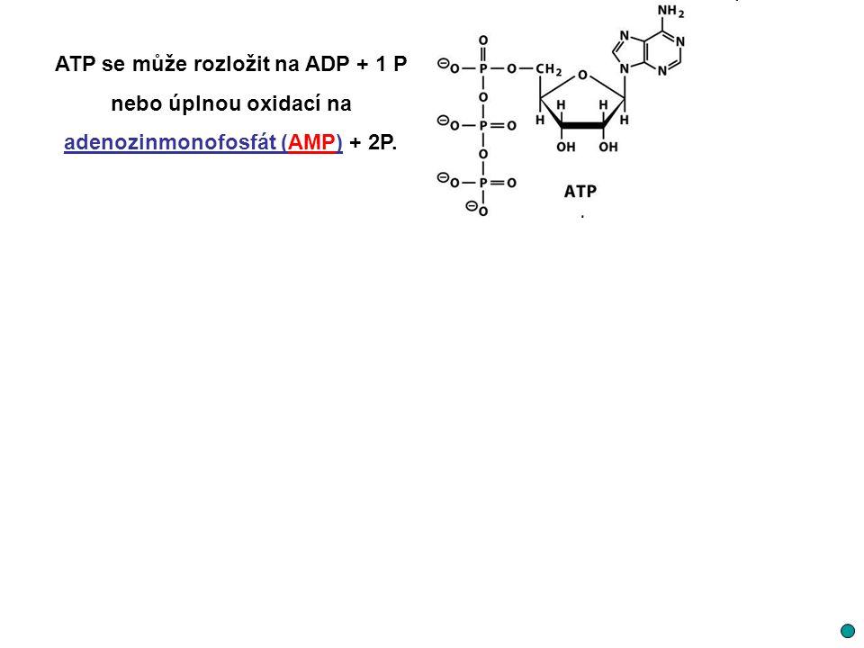 ATP se může rozložit na ADP + 1 P nebo úplnou oxidací na adenozinmonofosfát (AMP) + 2P.