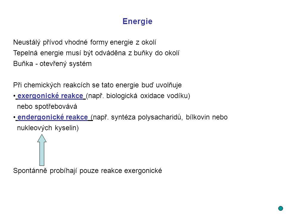 Energie Neustálý přívod vhodné formy energie z okolí Tepelná energie musí být odváděna z buňky do okolí Buňka - otevřený systém Při chemických reakcíc
