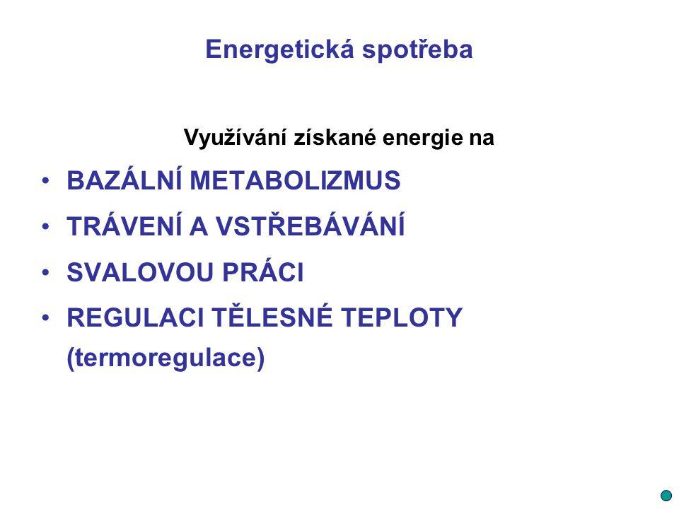 Energetická spotřeba Využívání získané energie na BAZÁLNÍ METABOLIZMUS TRÁVENÍ A VSTŘEBÁVÁNÍ SVALOVOU PRÁCI REGULACI TĚLESNÉ TEPLOTY (termoregulace)