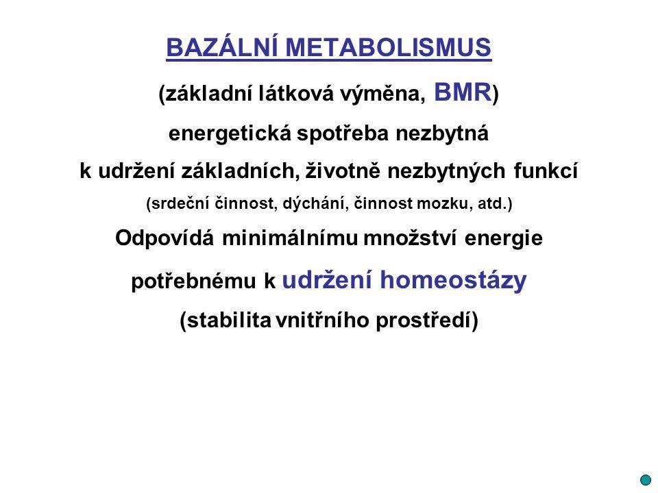 BAZÁLNÍ METABOLISMUS (základní látková výměna, BMR ) energetická spotřeba nezbytná k udržení základních, životně nezbytných funkcí (srdeční činnost, d