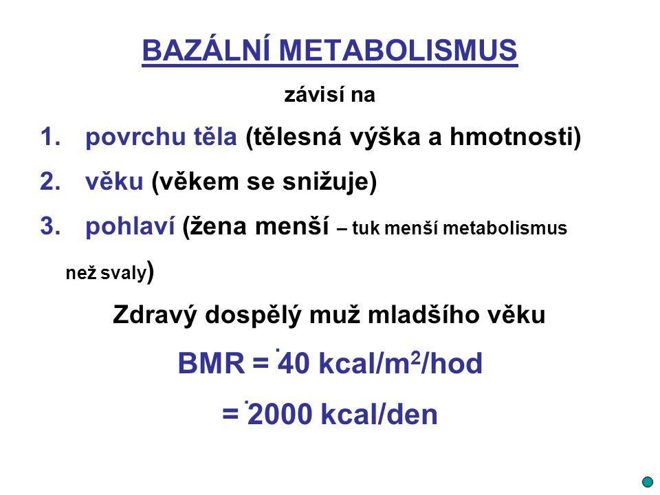 BAZÁLNÍ METABOLISMUS závisí na 1. povrchu těla (tělesná výška a hmotnosti) 2. věku (věkem se snižuje) 3. pohlaví (žena menší – tuk menší metabolismus