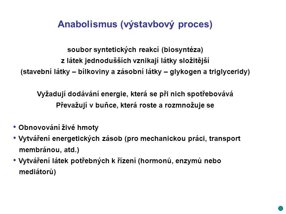 Laktát může být ve svalové tkáni, kde byl vytvořen (většinou bílá svalová vlákna) nebo ve tkáni, do které se dostal krví a)buď zpátky oxidován na pyruvát a rozložen v mitochondriích (Krebsově cyklu) na CO2, H2O a energii,