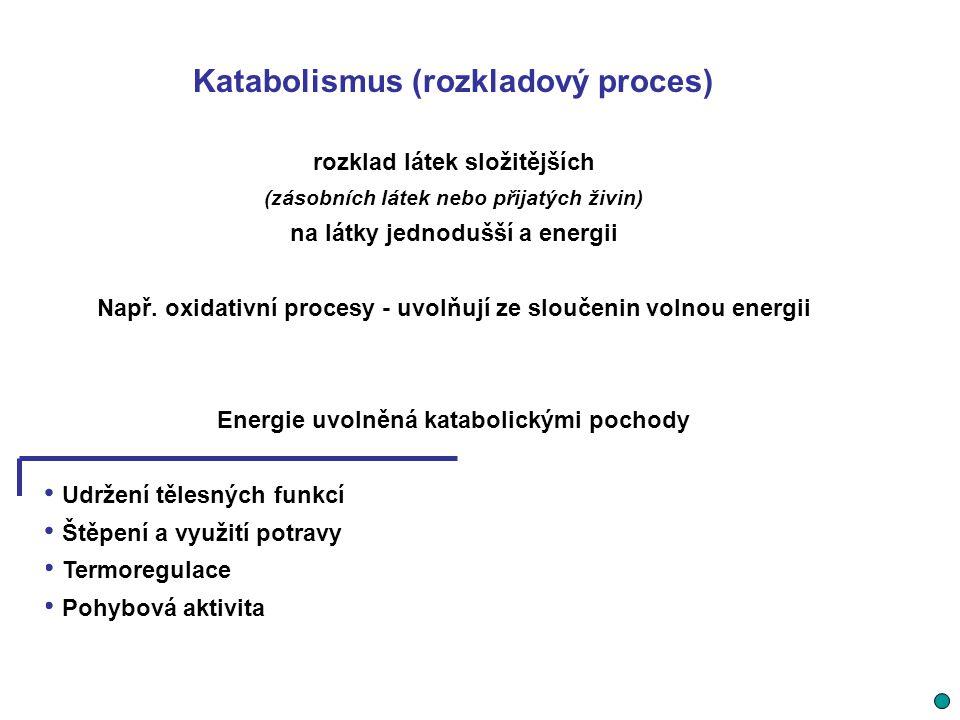 Katabolismus (rozkladový proces) rozklad látek složitějších (zásobních látek nebo přijatých živin) na látky jednodušší a energii Např. oxidativní proc
