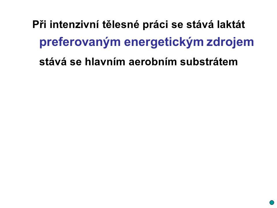Při intenzivní tělesné práci se stává laktát preferovaným energetickým zdrojem stává se hlavním aerobním substrátem