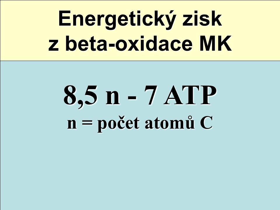8,5 n - 7 ATP n = počet atomů C Energetický zisk z beta-oxidace MK