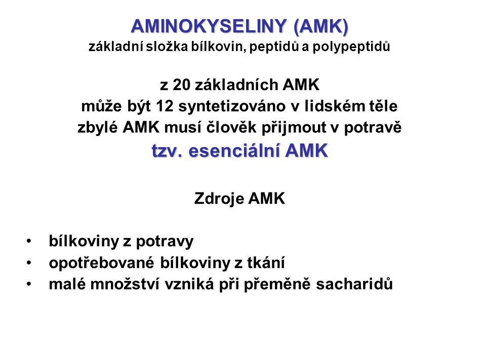AMINOKYSELINY (AMK) základní složka bílkovin, peptidů a polypeptidů z 20 základních AMK může být 12 syntetizováno v lidském těle zbylé AMK musí člověk