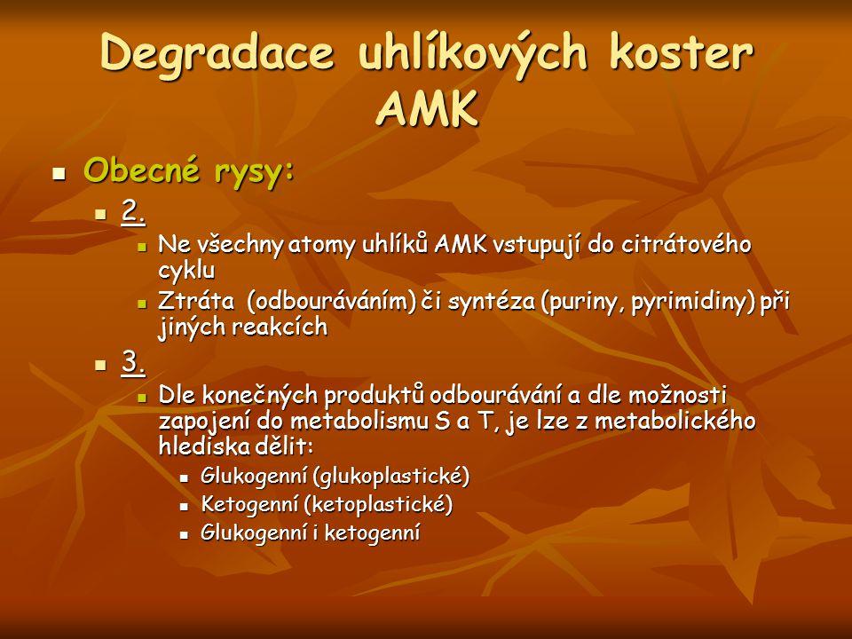 Degradace uhlíkových koster AMK Obecné rysy: Obecné rysy: 2. 2. Ne všechny atomy uhlíků AMK vstupují do citrátového cyklu Ne všechny atomy uhlíků AMK