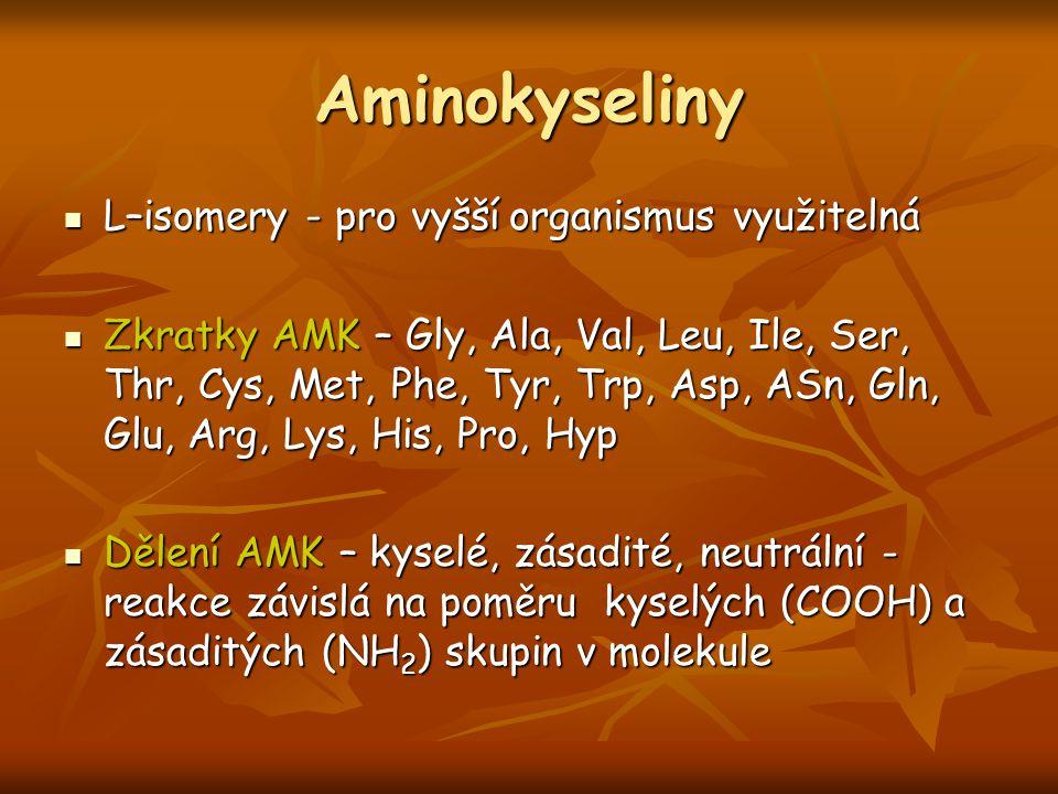 Aminokyseliny L–isomery - pro vyšší organismus využitelná L–isomery - pro vyšší organismus využitelná Zkratky AMK – Gly, Ala, Val, Leu, Ile, Ser, Thr,