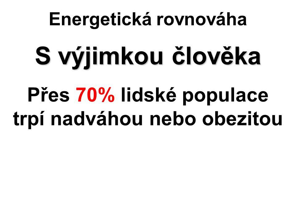 Energetická rovnováha S výjimkou člověka Přes 70% lidské populace trpí nadváhou nebo obezitou