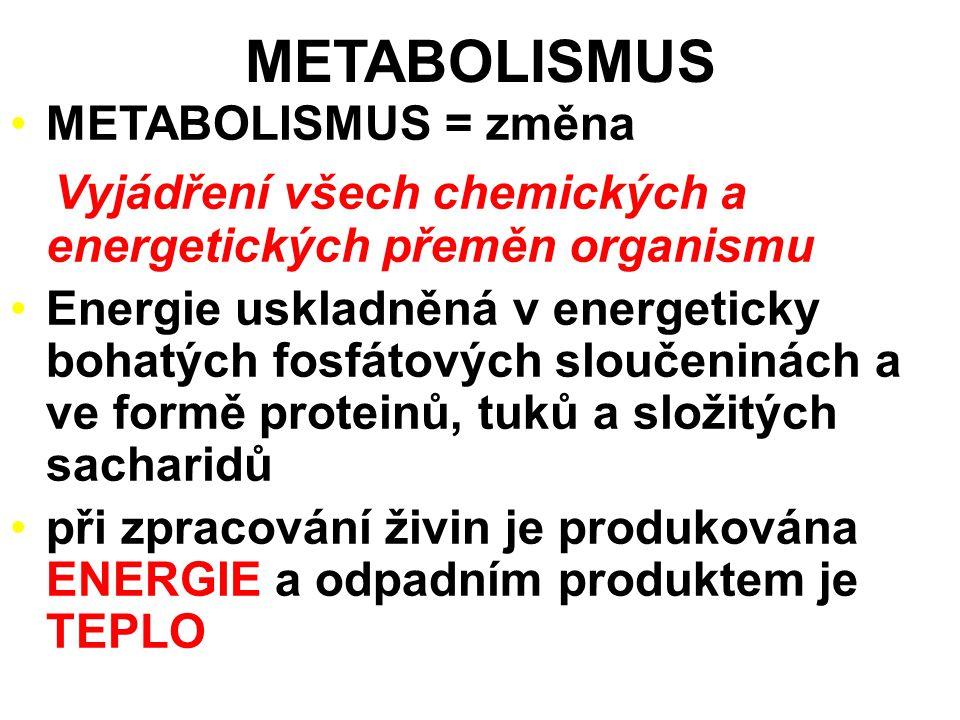 METABOLISMUS METABOLISMUS = změna Vyjádření všech chemických a energetických přeměn organismu Energie uskladněná v energeticky bohatých fosfátových sloučeninách a ve formě proteinů, tuků a složitých sacharidů při zpracování živin je produkována ENERGIE a odpadním produktem je TEPLO