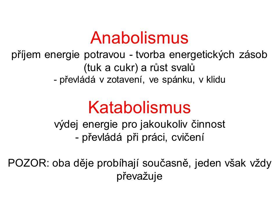 Anabolismus příjem energie potravou - tvorba energetických zásob (tuk a cukr) a růst svalů - převládá v zotavení, ve spánku, v klidu Katabolismus výdej energie pro jakoukoliv činnost - převládá při práci, cvičení POZOR: oba děje probíhají současně, jeden však vždy převažuje
