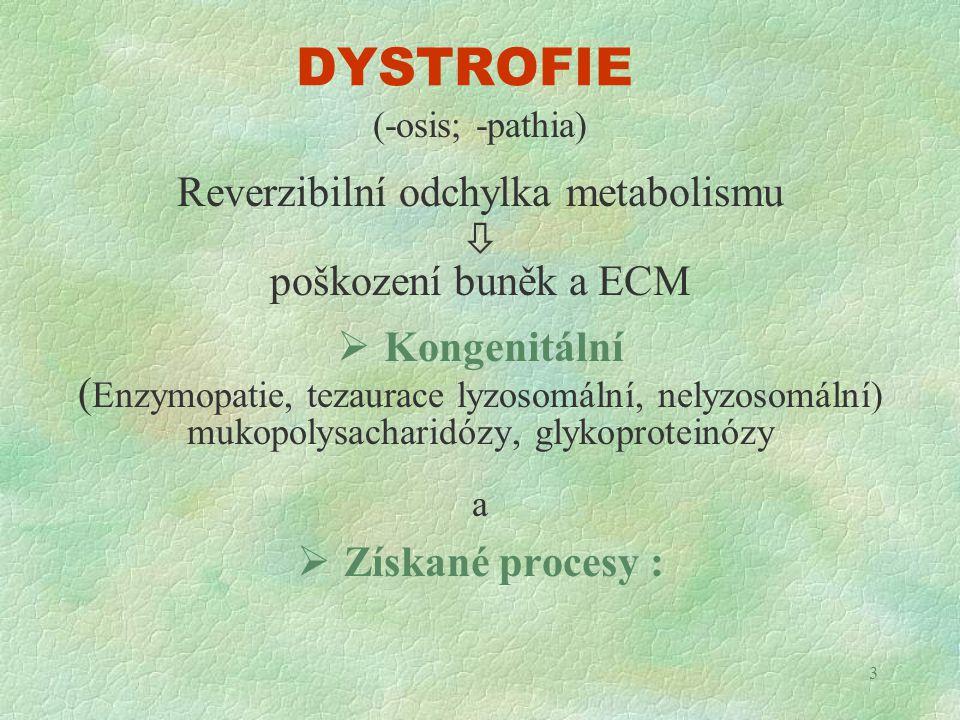 3 DYSTROFIE (-osis; -pathia) Reverzibilní odchylka metabolismu  poškození buněk a ECM  Kongenitální ( Enzymopatie, tezaurace lyzosomální, nelyzosomá