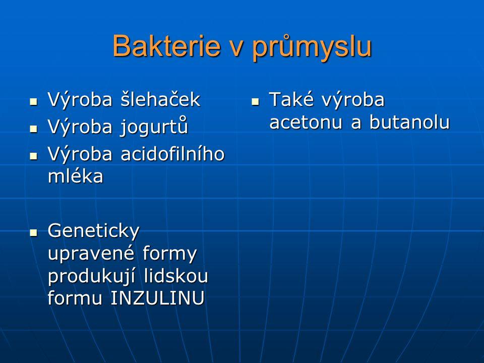 Bakterie v průmyslu Výroba šlehaček Výroba šlehaček Výroba jogurtů Výroba jogurtů Výroba acidofilního mléka Výroba acidofilního mléka Geneticky upravené formy produkují lidskou formu INZULINU Geneticky upravené formy produkují lidskou formu INZULINU Také výroba acetonu a butanolu Také výroba acetonu a butanolu