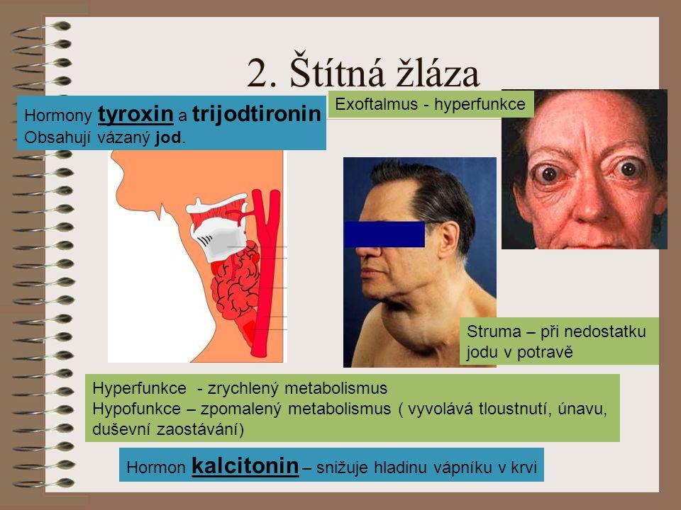 2. Štítná žláza Hormony tyroxin a trijodtironin Obsahují vázaný jod. Exoftalmus - hyperfunkce Struma – při nedostatku jodu v potravě Hyperfunkce - zry