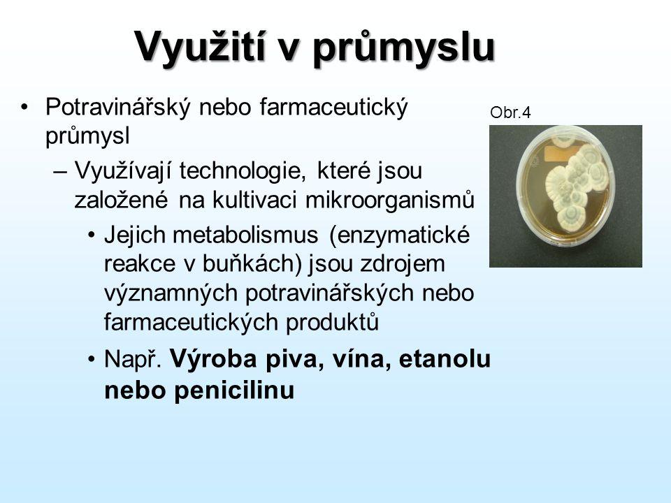 Využití v průmyslu Potravinářský nebo farmaceutický průmysl –Využívají technologie, které jsou založené na kultivaci mikroorganismů Jejich metabolismu