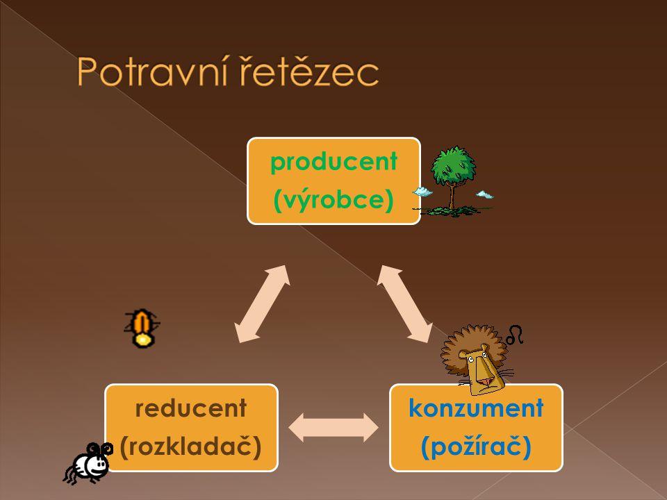 konzument I.konzument II.konzument III.producentreducent