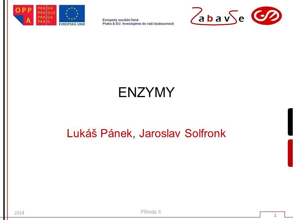ENZYMY Lukáš Pánek, Jaroslav Solfronk 201 4 Příroda II 1