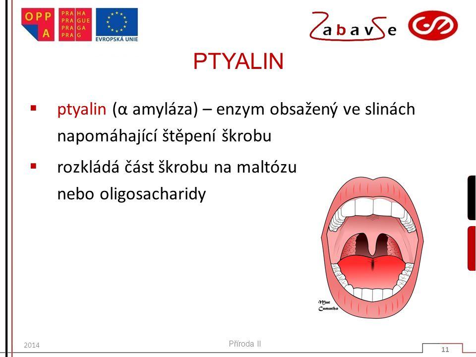PTYALIN  ptyalin (α amyláza) – enzym obsažený ve slinách napomáhající štěpení škrobu  rozkládá část škrobu na maltózu nebo oligosacharidy Příroda II