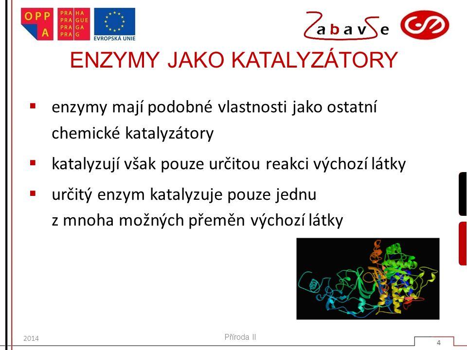 ENZYMY JAKO KATALYZÁTORY  enzymy mají podobné vlastnosti jako ostatní chemické katalyzátory  katalyzují však pouze určitou reakci výchozí látky  ur