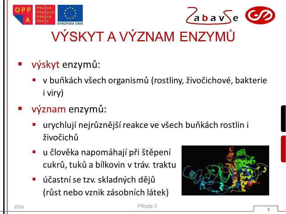 VÝSKYT A VÝZNAM ENZYMŮ  výskyt enzymů:  v buňkách všech organismů (rostliny, živočichové, bakterie i viry)  význam enzymů:  urychlují nejrůznější