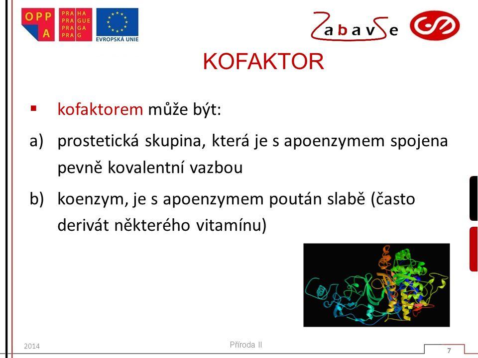 KOFAKTOR  kofaktorem může být: a)prostetická skupina, která je s apoenzymem spojena pevně kovalentní vazbou b)koenzym, je s apoenzymem poután slabě (