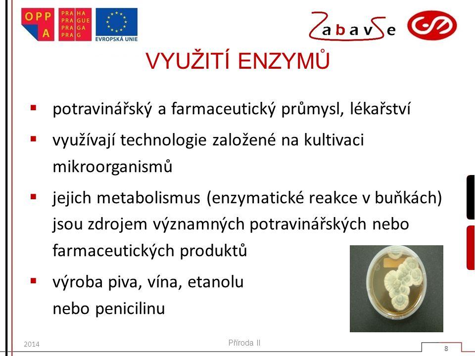 VYUŽITÍ ENZYMŮ  potravinářský a farmaceutický průmysl, lékařství  využívají technologie založené na kultivaci mikroorganismů  jejich metabolismus (