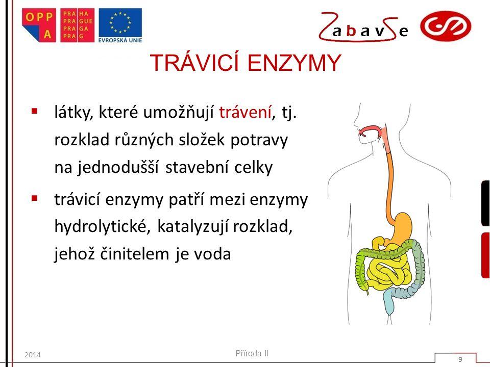 TRÁVICÍ ENZYMY  látky, které umožňují trávení, tj. rozklad různých složek potravy na jednodušší stavební celky  trávicí enzymy patří mezi enzymy hyd