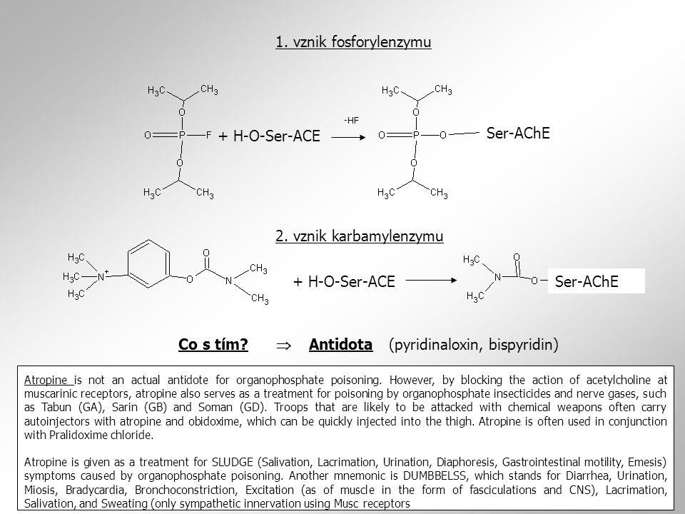 + H-O-Ser-ACE Ser-AChE -HF Ser-AChE+ H-O-Ser-ACE 1. vznik fosforylenzymu 2. vznik karbamylenzymu + Ser-AChE + H-O-Ser- AChE Co s tím?  Antidota (pyri