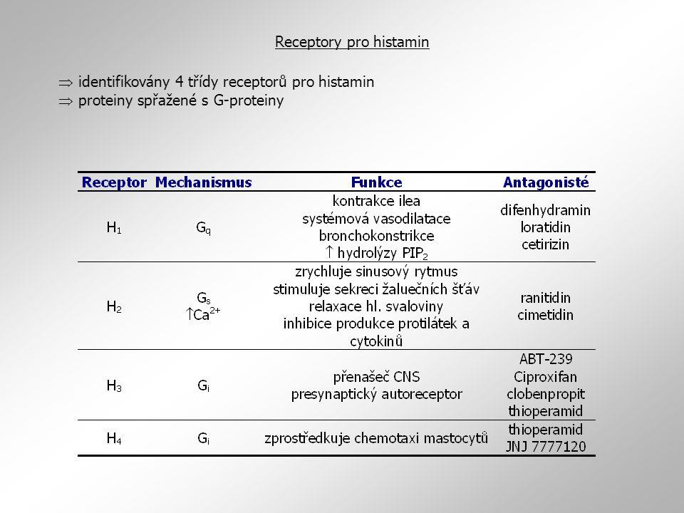  identifikovány 4 třídy receptorů pro histamin  proteiny spřažené s G-proteiny Receptory pro histamin