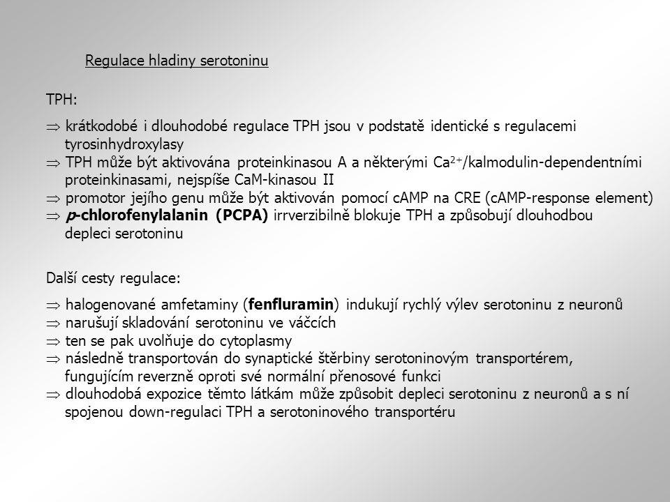 TPH:  krátkodobé i dlouhodobé regulace TPH jsou v podstatě identické s regulacemi tyrosinhydroxylasy  TPH může být aktivována proteinkinasou A a něk