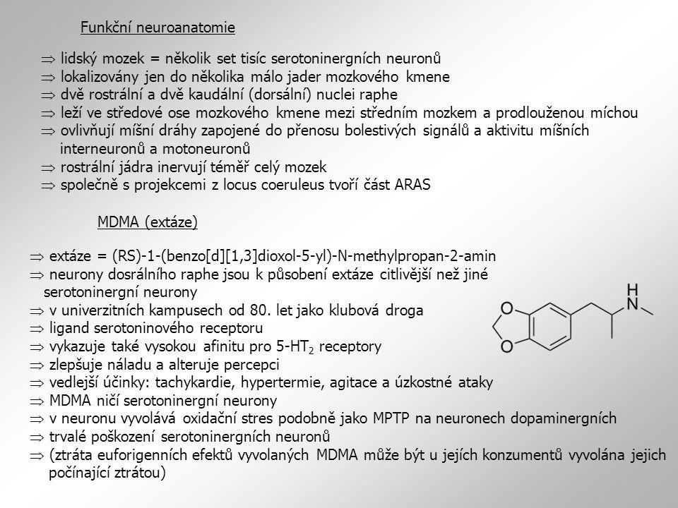 Skladování, uvolňování, zpětné vychytávání serotoninu  do synaptických váčků přenášen pomocí sejného přenašeče monoaminů (VMAT) jako katecholaminy  i plnění serotoninových váčků blokují a dlouhodobou synaptickou depleci serotoninu vyvolávají stejná farmka, např.