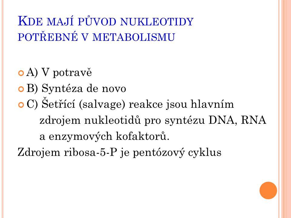 K DE MAJÍ PŮVOD NUKLEOTIDY POTŘEBNÉ V METABOLISMU A) V potravě B) Syntéza de novo C) Šetřící (salvage) reakce jsou hlavním zdrojem nukleotidů pro synt